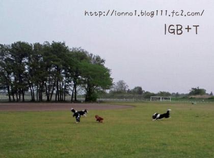 110502-04.jpg