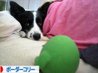 b-033_20090719201527.jpg