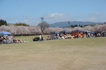 忠元公園桜祭り