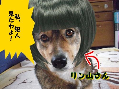 リン山さん
