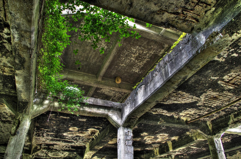 川南蜂の巣
