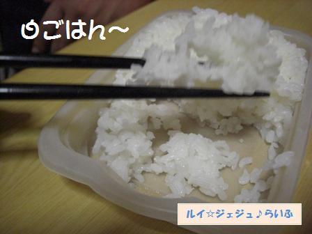 CIMG1586.jpg