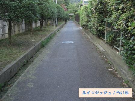CIMG2169.jpg