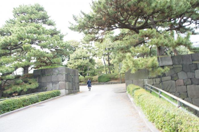 江戸城24