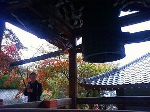111123_miyajima03.jpg