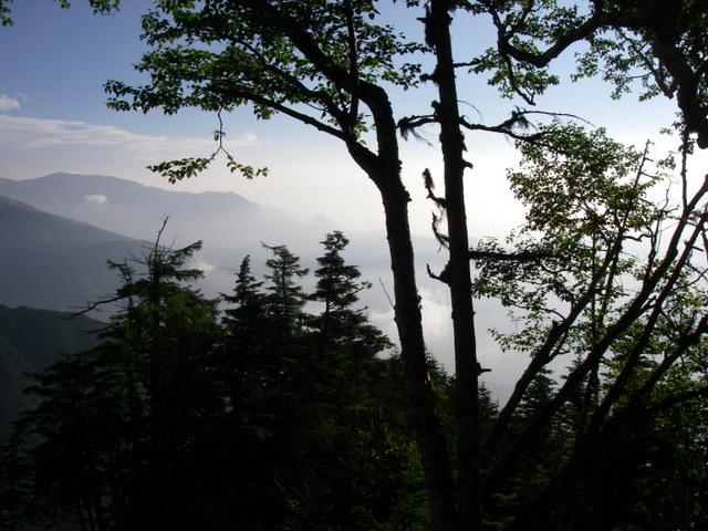 南アルプスー笹山(笹山東尾根)H20.7.19~20 037