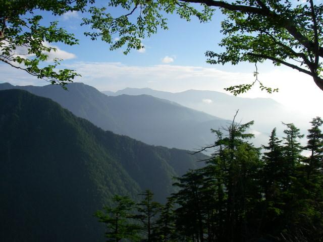 南アルプスー笹山(笹山東尾根)H20.7.19~20 036