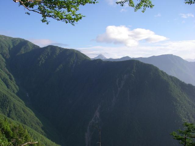 南アルプスー笹山(笹山東尾根)H20.7.19~20 032