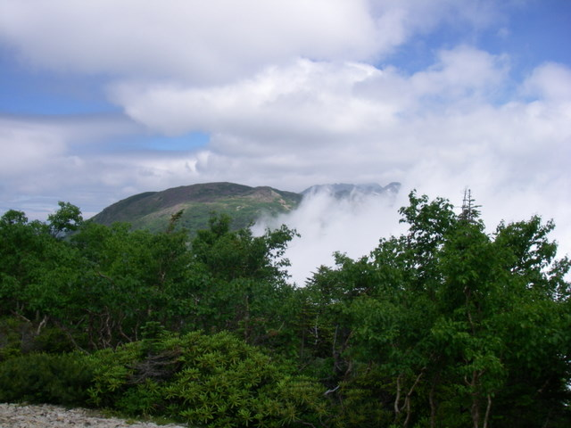 南アルプスー笹山(笹山東尾根)H20.7.19~20 044