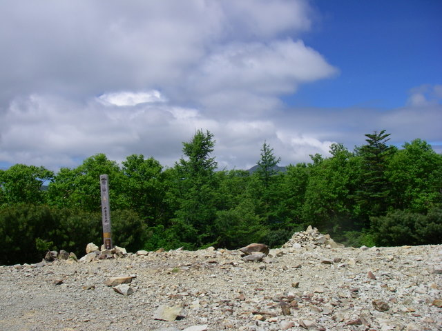 南アルプスー笹山(笹山東尾根)H20.7.19~20 052
