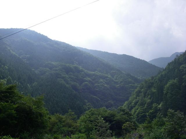 南アルプスー笹山(笹山東尾根)H20.7.19~20 060