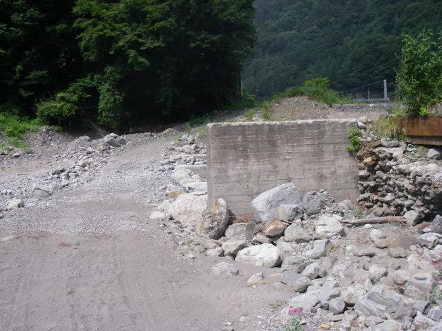 南アルプスー笹山(笹山東尾根)H20.7.19~20 061