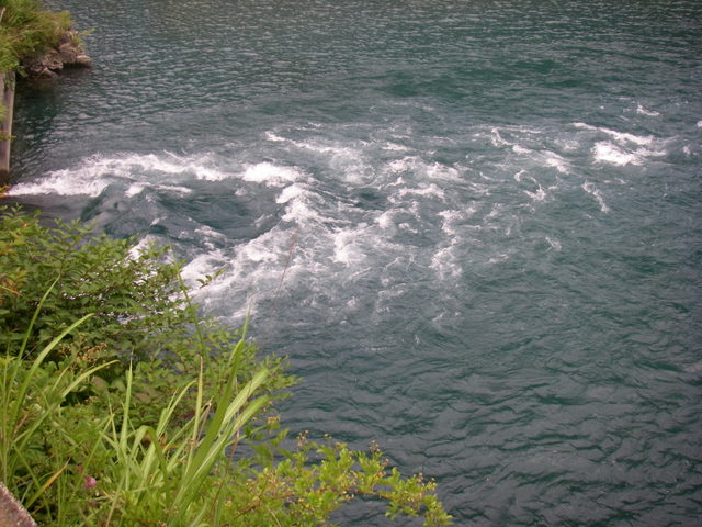 南アルプスー笹山(笹山東尾根)H20.7.19~20 064