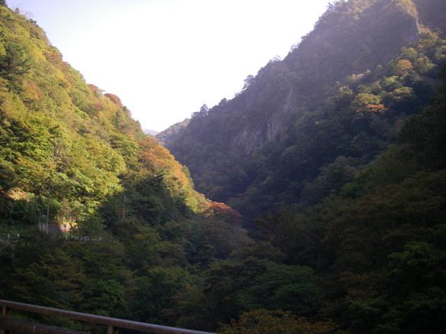 奥多摩ー酉谷山~長沢背稜~雲取山荘~鴨沢H20.10 (2)