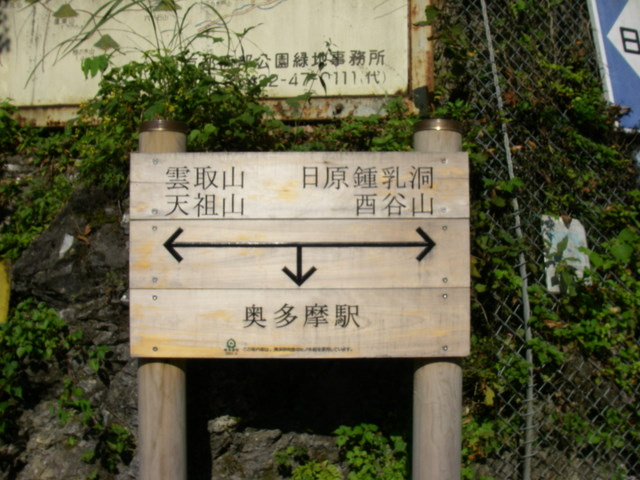 奥多摩ー酉谷山~長沢背稜~雲取山荘~鴨沢H20.10 (3)