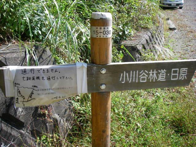 奥多摩ー酉谷山~長沢背稜~雲取山荘~鴨沢H20.10 (17)