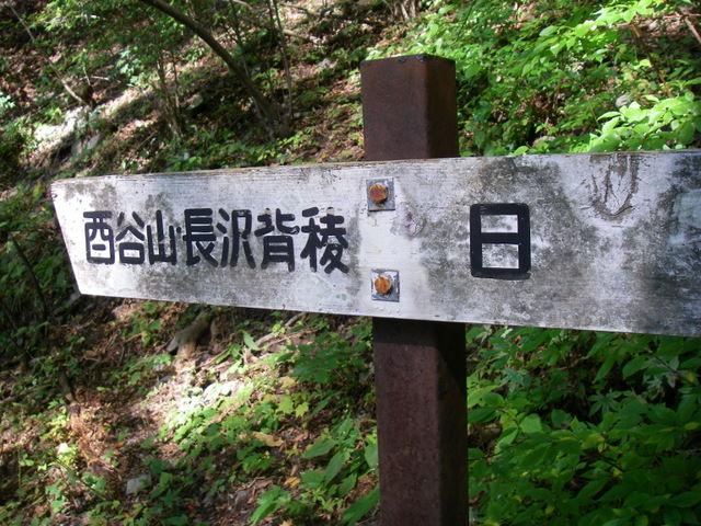 奥多摩ー酉谷山~長沢背稜~雲取山荘~鴨沢H20.10 (24)