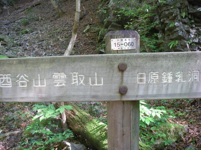 奥多摩ー酉谷山~長沢背稜~雲取山荘~鴨沢H20.10 (32)
