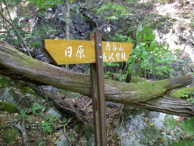 奥多摩ー酉谷山~長沢背稜~雲取山荘~鴨沢H20.10 (49)