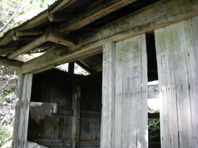 奥多摩ー酉谷山~長沢背稜~雲取山荘~鴨沢H20.10 (53)