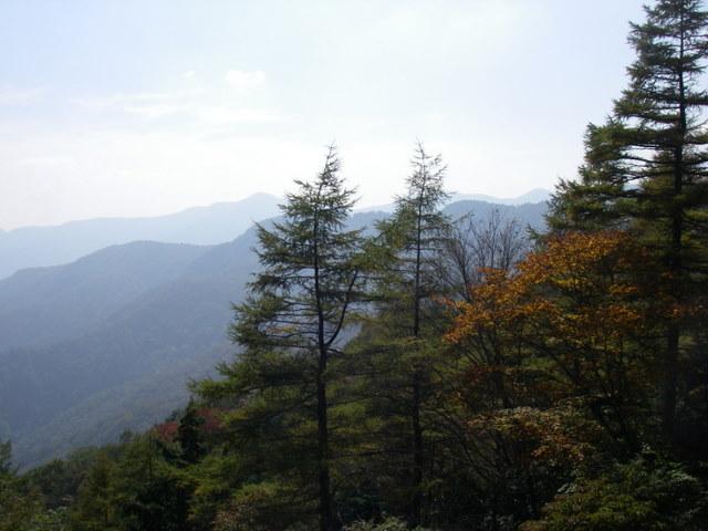 奥多摩ー酉谷山~長沢背稜~雲取山荘~鴨沢H20.10 (67)