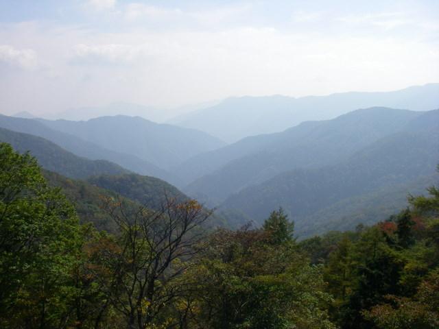 奥多摩ー酉谷山~長沢背稜~雲取山荘~鴨沢H20.10 (66)