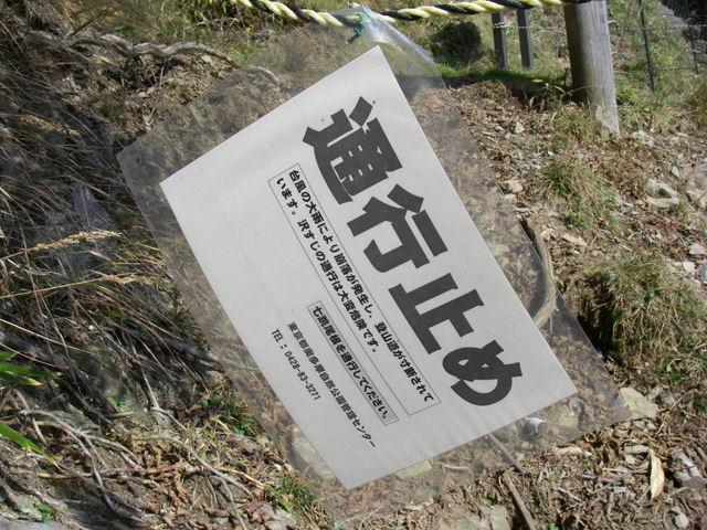 奥多摩ー酉谷山~長沢背稜~雲取山荘~鴨沢H20.10 (64)