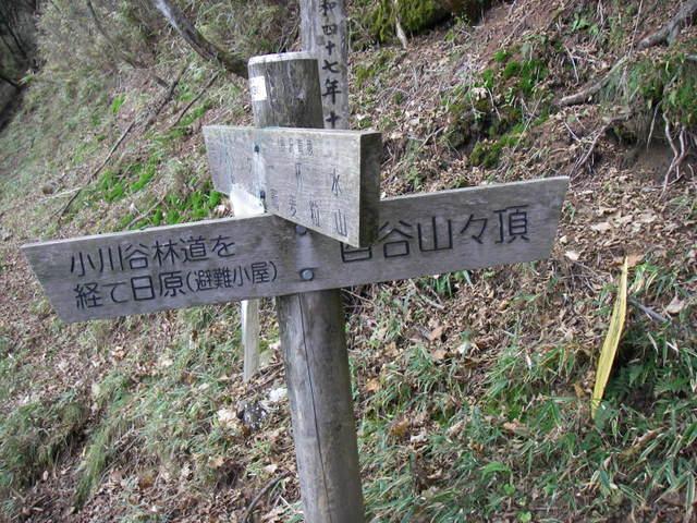 奥多摩ー酉谷山~長沢背稜~雲取山荘~鴨沢H20.10 (87)