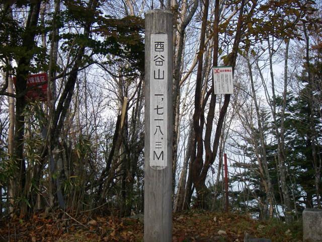 奥多摩ー酉谷山~長沢背稜~雲取山荘~鴨沢H20.10 (98)