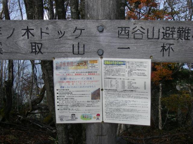 奥多摩ー酉谷山~長沢背稜~雲取山荘~鴨沢H20.10 (93)