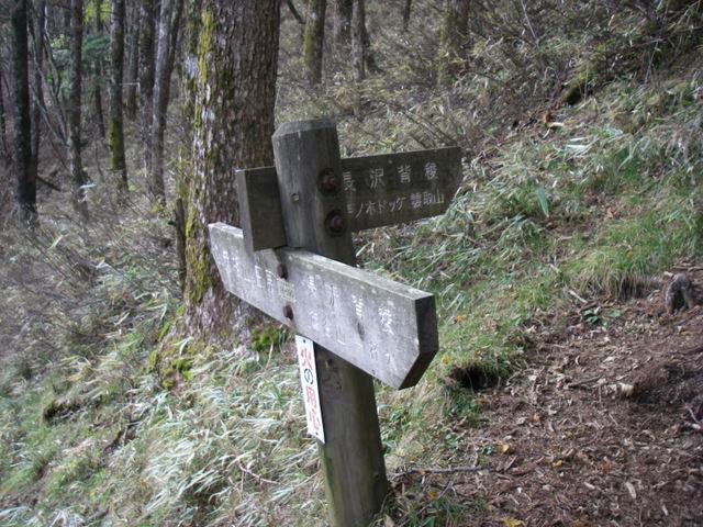 奥多摩ー酉谷山~長沢背稜~雲取山荘~鴨沢H20.10 (113)
