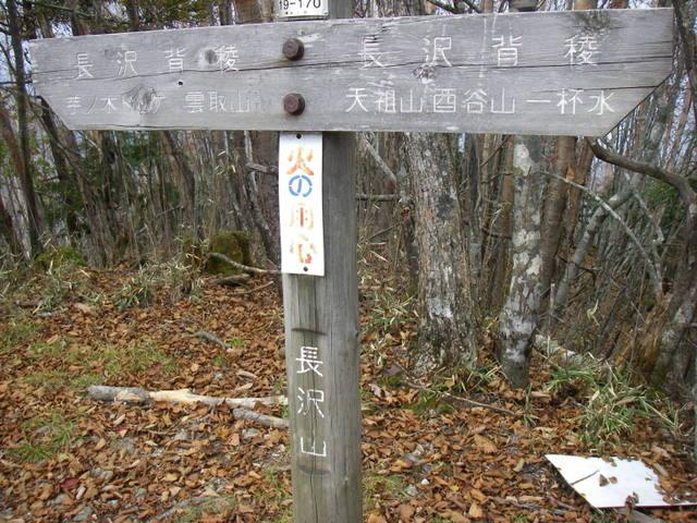 奥多摩ー酉谷山~長沢背稜~雲取山荘~鴨沢H20.10 (118)