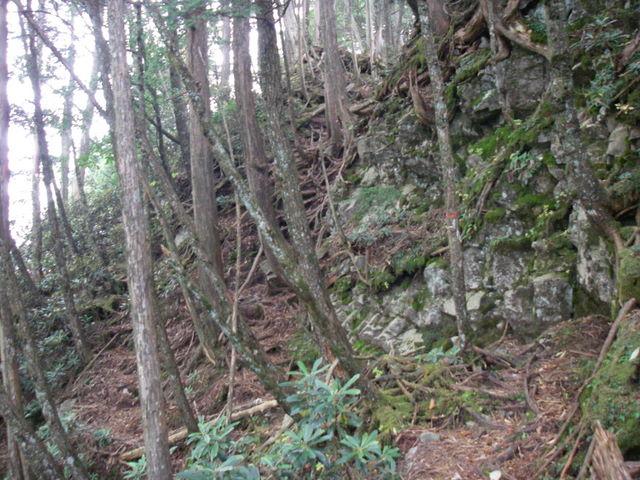 奥多摩ー酉谷山~長沢背稜~雲取山荘~鴨沢H20.10 (125)