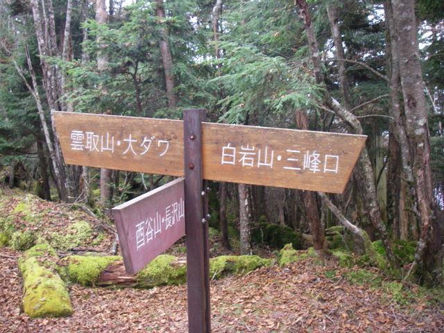 奥多摩ー酉谷山~長沢背稜~雲取山荘~鴨沢H20.10 (130)