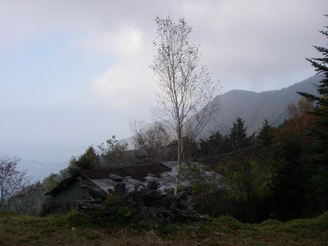 奥多摩ー酉谷山~長沢背稜~雲取山荘~鴨沢H20.10 (150)