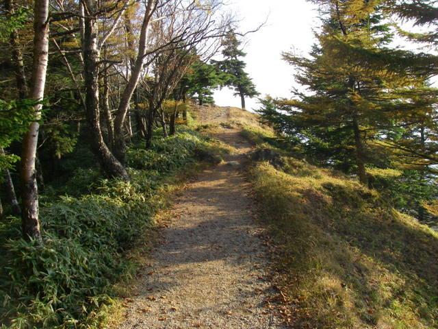 奥多摩ー酉谷山~長沢背稜~雲取山荘~鴨沢H20.10 (164)