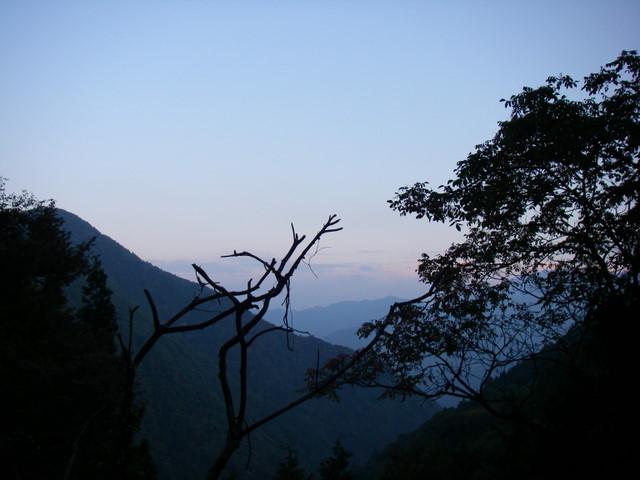 奥多摩ー酉谷山~長沢背稜~雲取山荘~鴨沢H20.10 (189)