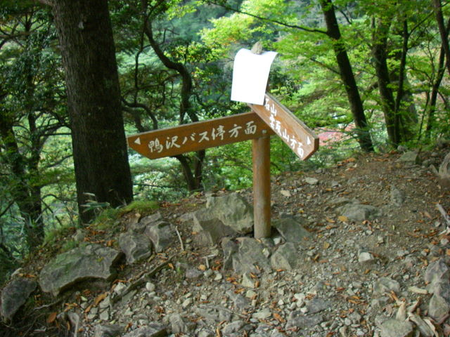 奥多摩ー酉谷山~長沢背稜~雲取山荘~鴨沢H20.10 (188)