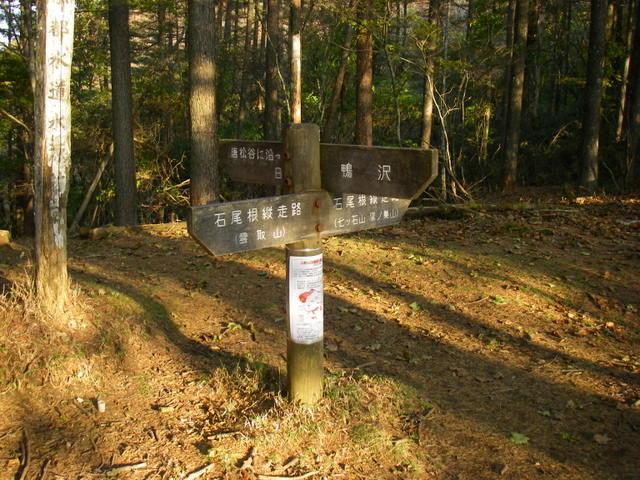 奥多摩ー酉谷山~長沢背稜~雲取山荘~鴨沢H20.10 (184)