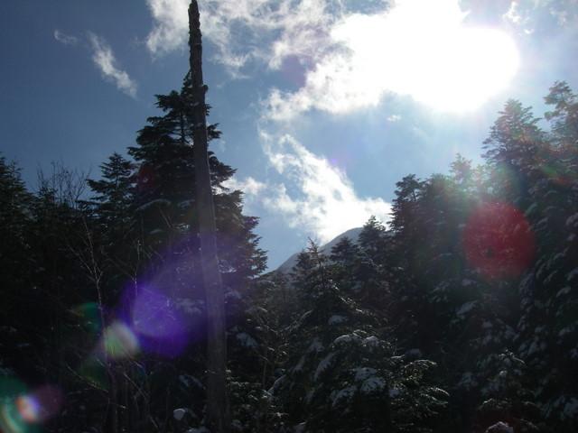 八ヶ岳(赤岳文三郎尾根)ーH19・11・18 015