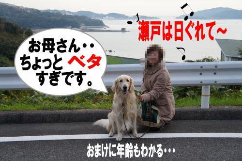 10_convert_20111127001358.jpg