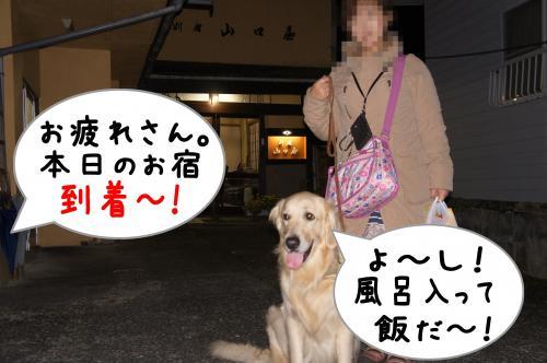 1_convert_20111120144830.jpg