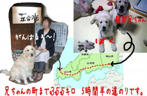 1_convert_20111124125013.jpg