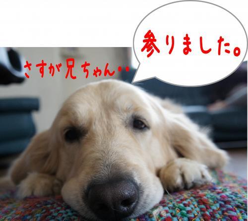 縺ゅ¢6_convert_20120108125129