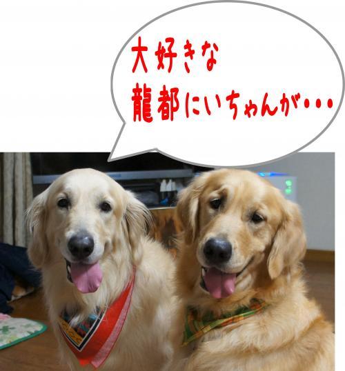 縺ゅ¢4_convert_20120108125027