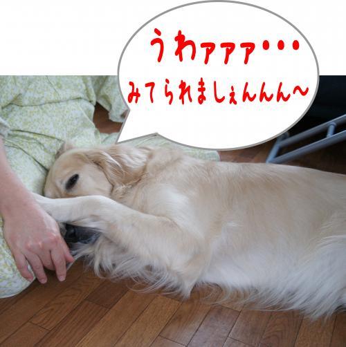 縺ゅ¢3_convert_20120108125005