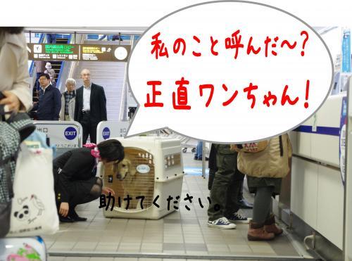 蟶ー繧・_convert_20120109191350