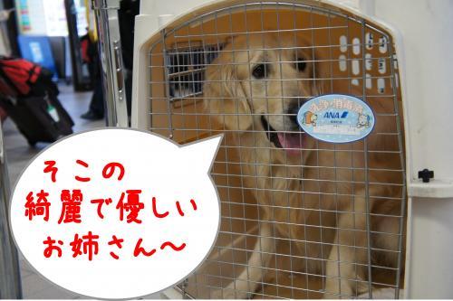 蟶ー繧・_convert_20120109191329