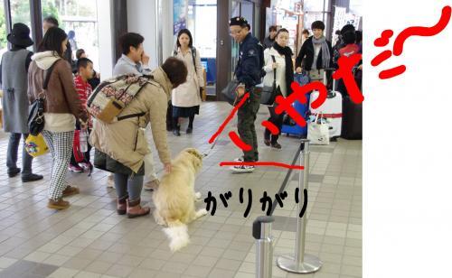 蟶ー繧・_convert_20120109191307