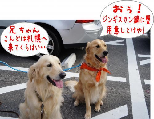 蟶ー繧・_convert_20120109191233